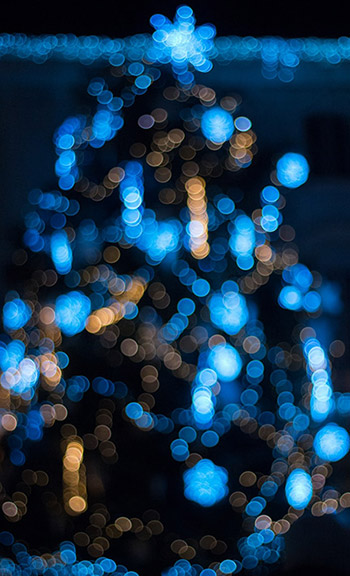 blue lights on a Christmas tree